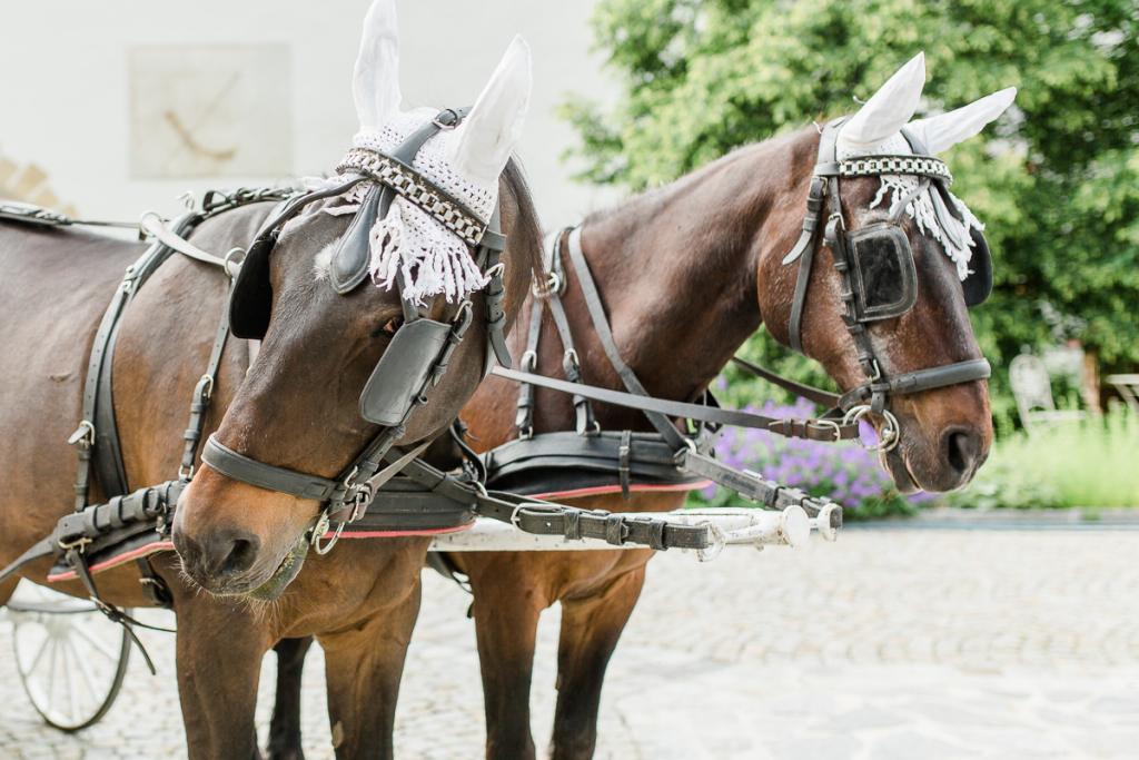 Hochzeitsfotograf Wien_1_IMG_3793