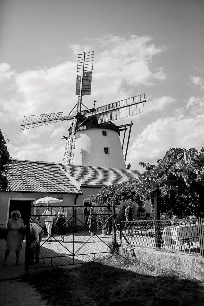 Hochzeit bei der Mühle in Retz
